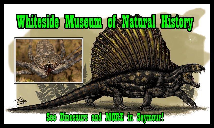 Dimetrodon-dinosaurs-22052566-850-497