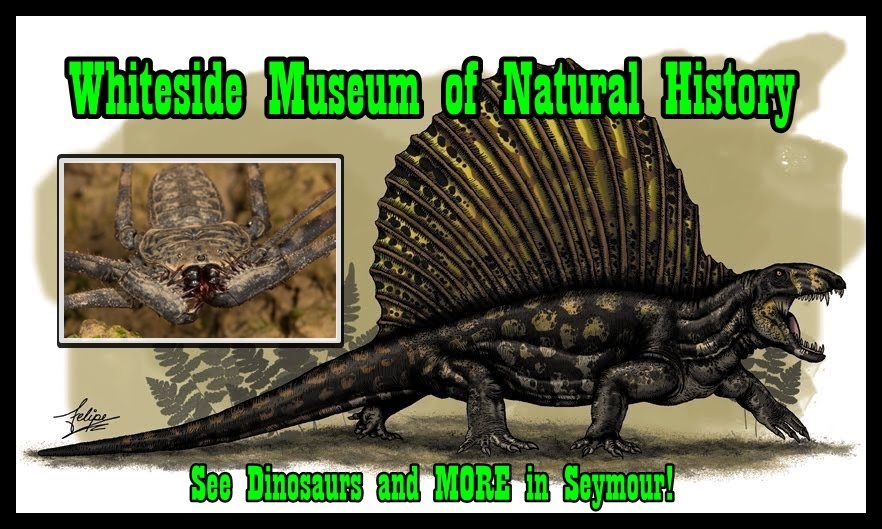 Museums With Dinosaur Exhibits In Texas Dinosaurs Uthed Museum Of Nature And Science Dallas Tx
